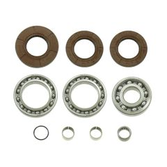 Bronco Differential Bearing & Seal Kit AT-03A35