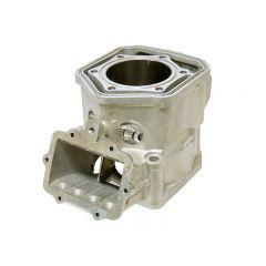 Sno-X Cylinder Rotax 600cc Sdi