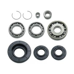 Bronco Differential Bearing & Seal Kit AT-03A14