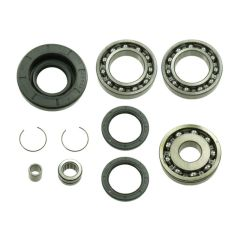Bronco Differential Bearing & Seal Kit AT-03A24